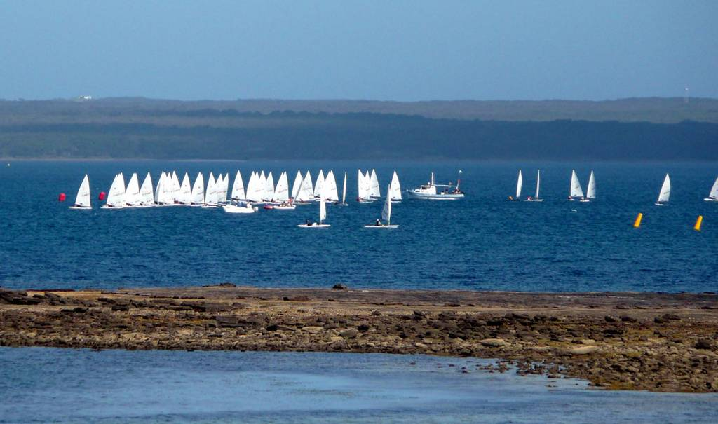 The Laser Radial fleet starts a race at Callala Bay. Tony is in the thick of the action, with red hull and red sail numbers, above left of the white power boat.