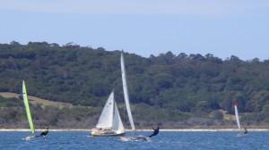 Wallagoot's diverse fleet of catamarans, trailer-sailors and dinghys raced together