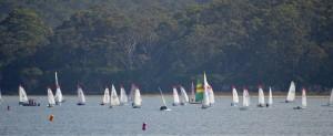 52 boats raced in 2019 WLBC Regatta