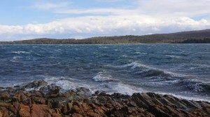 30 knot winds cancelled sailing